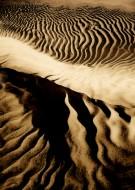 Dunes Paint