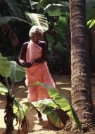 Spirit of Coconut