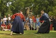 Cajovy Festival