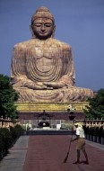 Buddha Scavenger