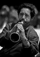 Celebration Trumpeter